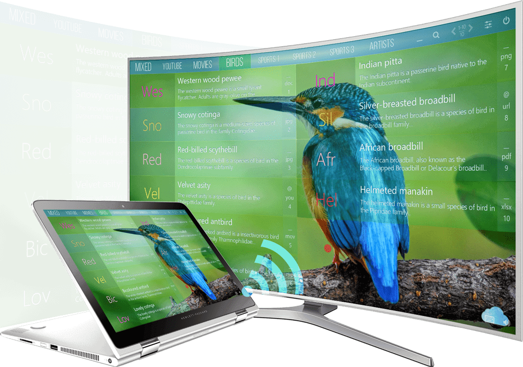 mediaboard curved tv bird trimmed - About The Developer - André Gansel, IT Enthusiast
