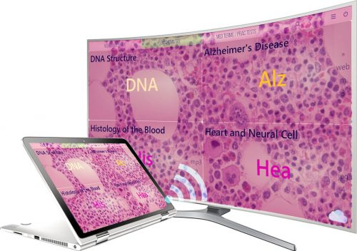 mediaboard video poster medical biochemistry ENGLISH HTLM5 500x352 - Mediaboard - Medical Studies