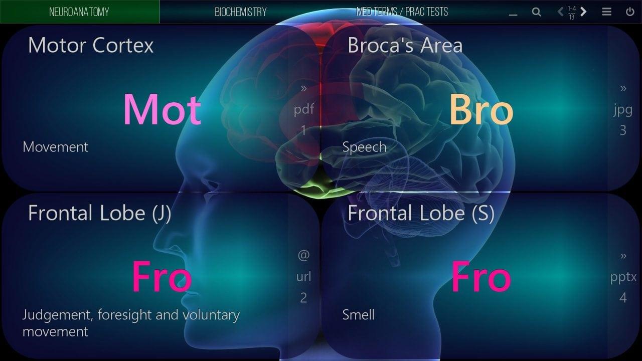 mediaboard video poster medical neuroanatomy 2 ENGLISH HTLM5 e1530111483774 - Mediaboard - Home EN